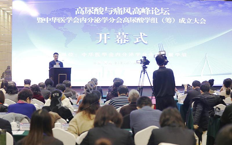 我院王色蓉主任应邀出席高尿酸与痛风高峰论坛暨中华医